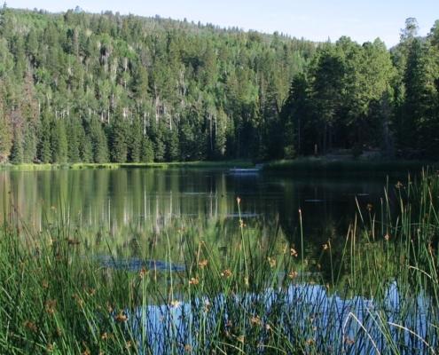 Boulder Mountain Lake